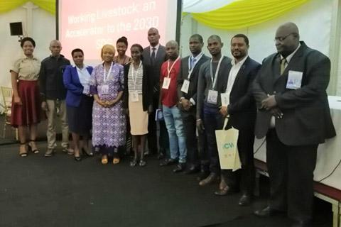 Equine charities speak up for working animals at Africa Regional Forum on Sustainable Development