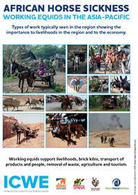 African Horse Sickness - working equids in the asia-pacific