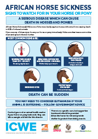 Signs to watch for in your horse or pony