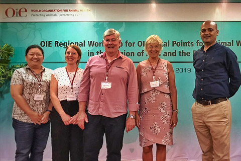 UK equine charities meet in Indonesia to discuss welfare in the Asia Pacific region